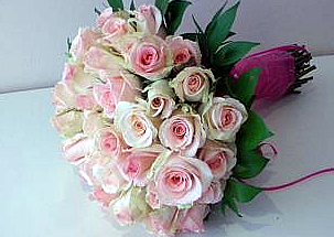 19 white pink roses - Sleeping beauty