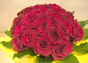 Bouquet with two dozens of red roses - Passion